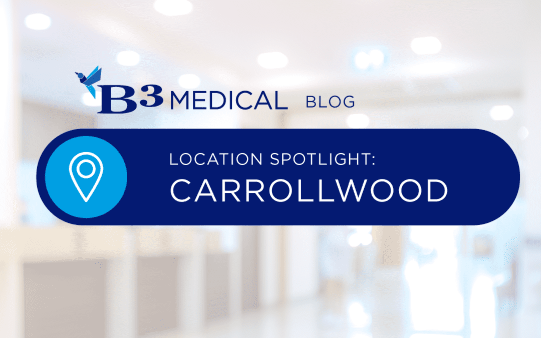 Location Spotlight: Carrollwood